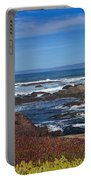 Lonesome Gull Portable Battery Charger