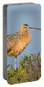 Long-billed Curlew Numenius Americanus Portable Battery Charger