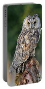 Long-eared Owl 4 Portable Battery Charger