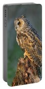Long-eared Owl 8 Portable Battery Charger