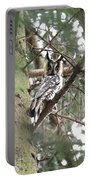 Long Eared Owl At Attention Portable Battery Charger
