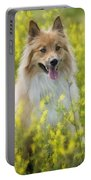 Long Haired Mixed Breed Portable Battery Charger