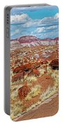 Long Logs Trail In Rainbow Forest In Petrified Forest National Park-arizona  Portable Battery Charger