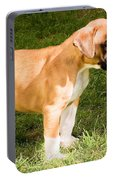 long tailed Boxer Puppy in the sun Portable Battery Charger