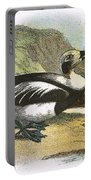 Long Tailed Duck Portable Battery Charger