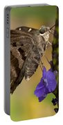 Long-tailed Skipper Photo Portable Battery Charger
