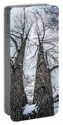 Looking At Tree Tops After A Winter Snow Storm Portable Battery Charger