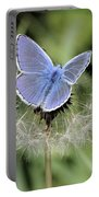 Looking For Nectar In All The Wrong Places Portable Battery Charger