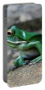 Looking Green Portable Battery Charger