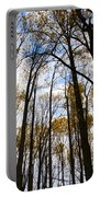 Looking Skyward Into Autumn Trees Portable Battery Charger