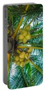 Looking Up A Coconut Tree Portable Battery Charger