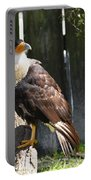 Lookout Bird Portable Battery Charger