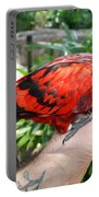 Lory Landing Portable Battery Charger
