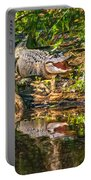 Louisiana Bayou 2 - Paint Portable Battery Charger