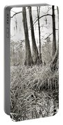 Louisiana Swamp Portable Battery Charger