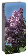 Lovely In Lilac Portable Battery Charger