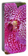 Orchid Lovely In Pink And White Portable Battery Charger