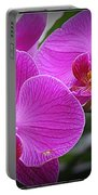 Lovely In Purple - Orchids Portable Battery Charger