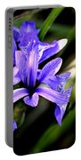 Lovely Iris Portable Battery Charger