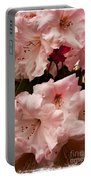 Lovely Pink Rhododendrons With Border Portable Battery Charger