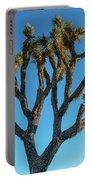 Low Angle View Of Joshua Tree, Joshua Portable Battery Charger