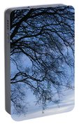 Low Angle View Of Tree At Dawn, Dark Portable Battery Charger