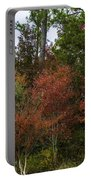 Lowcountry Fall Color Portable Battery Charger