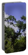 Lowcountry Life Oaks Portable Battery Charger