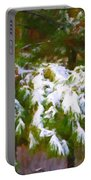 Lowcountry Snow Portable Battery Charger