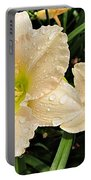 Lullaby Baby Daylilies Portable Battery Charger