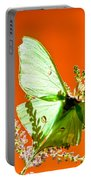 Luna Moth On Astilby Orange Back Ground Portable Battery Charger