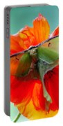 Luna Moth On Poppy Aqua Back Ground Portable Battery Charger