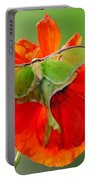 Luna Moth On Poppy Square Format Portable Battery Charger