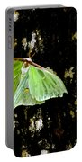 Luna Moth On Tree Portable Battery Charger