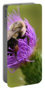 Lunching Atop A Thistle Portable Battery Charger