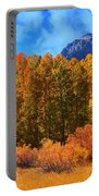 Lundy's Fall Show Portable Battery Charger