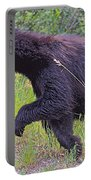 Lunging Black Bear Near Road In Grand Teton National Park-wyoming   Portable Battery Charger
