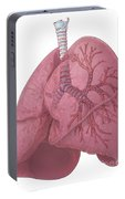Lungs And Bronchi Portable Battery Charger