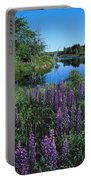 Lupin And Lake Portable Battery Charger