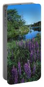 Lupin And Lake-v Portable Battery Charger