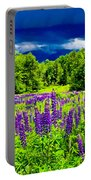 Lupines Light Portable Battery Charger
