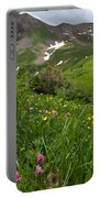 Lush Colorado Summer Landscape Portable Battery Charger