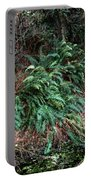 Lush Ferns Of The Forest Portable Battery Charger