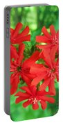 Lychnis Heart Portable Battery Charger
