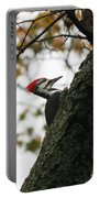 Lyndonville Pileated Woodpecker Portable Battery Charger