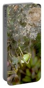 Lynx Spider And Young Portable Battery Charger