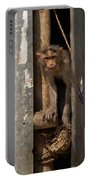 Macaque Peeking Out Portable Battery Charger