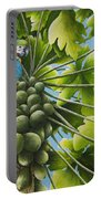 Macaw Parrots In Papaya Tree Portable Battery Charger