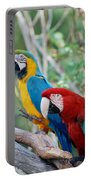 Macaws Of Color23 Portable Battery Charger