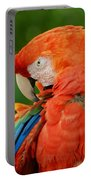 Macaws Of Color29 Portable Battery Charger